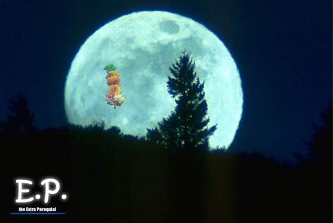 Padre e a Lua