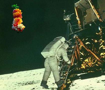 Padre na Lua