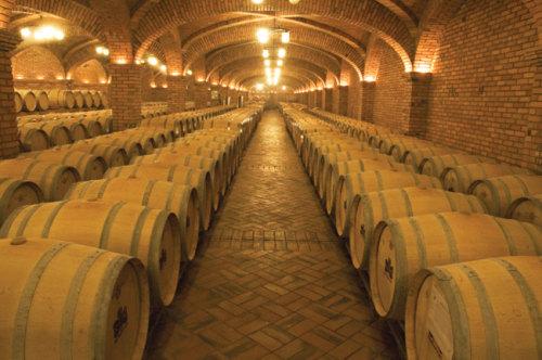 Imagem de uma vinicola