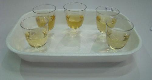 Vários copos de cachaça