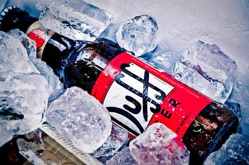 Garrafa da cerveja Duff num balde d'água