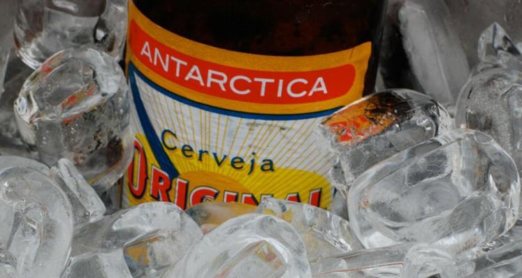 Garrafa da cerveja Original no balde de gelo