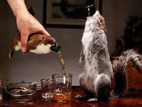 recordes cervejeiros