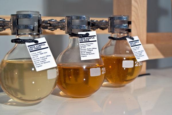 Garrafas de whisky de urina