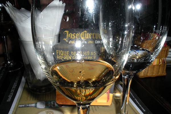 Taça de degustação de Tequila