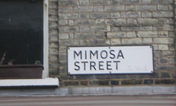 Placa na janela com a frase Mimosa Street