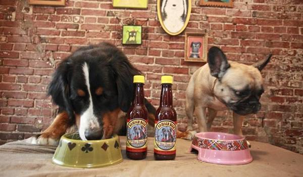 Cachorros bebendo a cerveja Bowser Beer