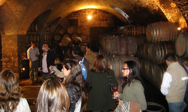 Pessoas visitando vinícola