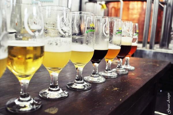 Todos os copos das cervejas Bier Hoff