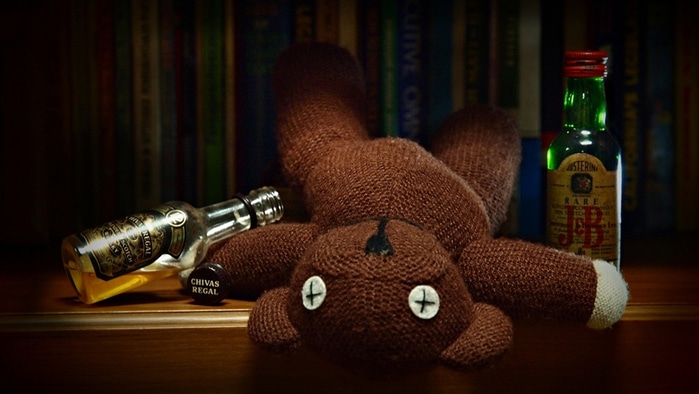 Urso morrendo de bêbado