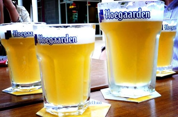 Copos da cerveja Hoegaarden