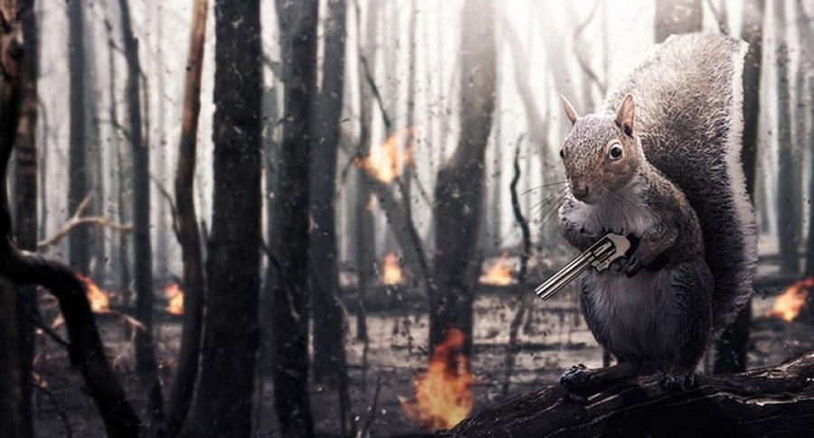 Esquilo segurando uma arma simulando vingança