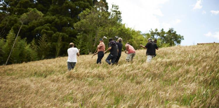 Funcionários na plantação de cevada na Granja Comary