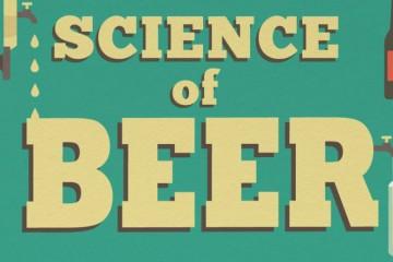 A ciência da cerveja