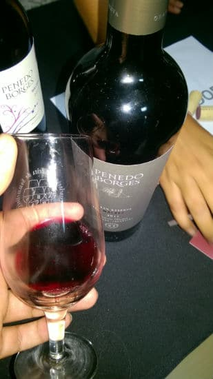 vinho penedo borges no Malbec World Day