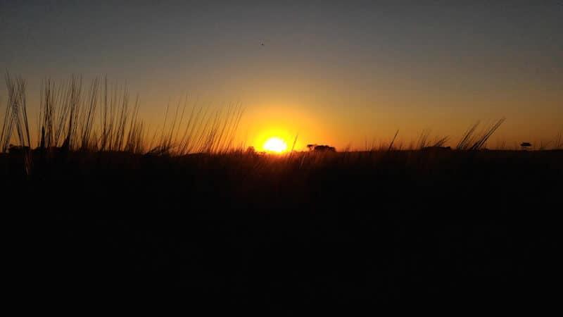 pôr do sol no dia de campo ambev