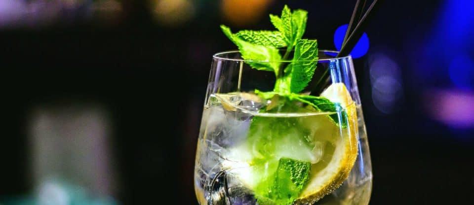 consumo de gin aumenta bastante no Brasil