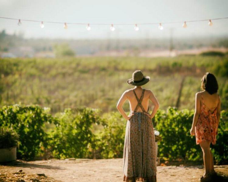 mulheres vinícolas de Mendoza